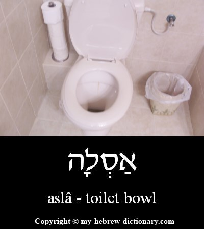 Toilet bowl in Hebrew
