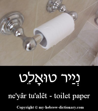 Toilet Paper in Hebrew
