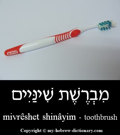 Toothbrush in Hebrew