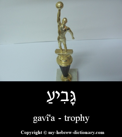 trophy in Hebrew