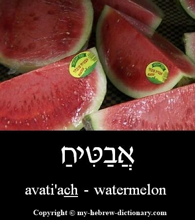 Watermelon in Hebrew